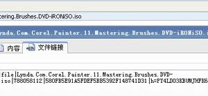 《Corel Painter 11精通笔刷教程》(Corel Painter 11: Mastering Brushes)[光盘镜像]