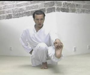 《印度莫汉 纯粹瑜伽视频教程DVD》
