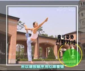 《玉珠铉-减肥&瑜伽视频教程RMVB》