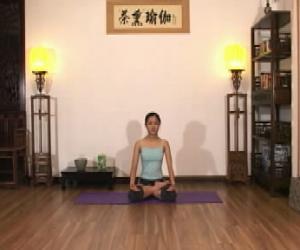 《茶熏瑜伽视频教程》