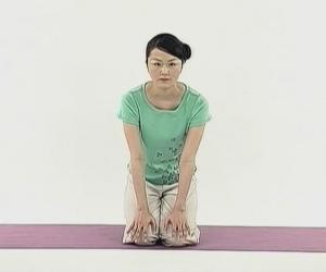 《净化身心的瑜伽视频教程》高清DVD版