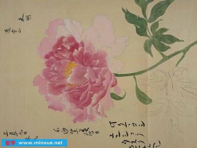 《日本贵重生字像-植物书画》(JapaneseBota图谱教学课程v生字图片
