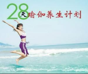 《28天瑜伽视频教程养生计划VCD》