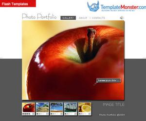 《TemplateMonster网站模板收集》(Template Monster Full Sites)