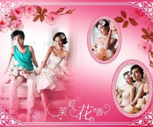 《婚纱影楼后期设计PSD模版系列二》(PSD Plastic)Photoshop[压缩包]