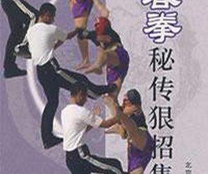 《咏春拳秘传狠招集粹》扫描版[PDF]
