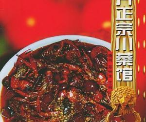 《怎样开正宗川菜馆》文字版[PDF]