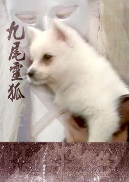 《九尾灵狐》完整版[mp3]