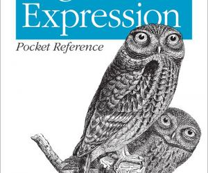 《正则表达式袖珍参考手册 (第2版)》(Regular Expression Pocket Reference: for Perl, Ruby, PHP, Py