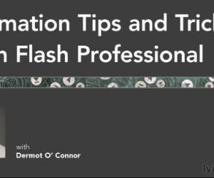 《Flash Professional动画技巧与窍门视频教程》英语
