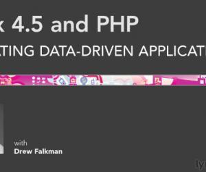 《Flex 4.5与PHP: 创建数据驱动程序视频教程》