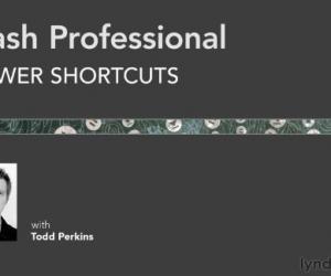 《Flash Professional快速入门视频教程》英文原版