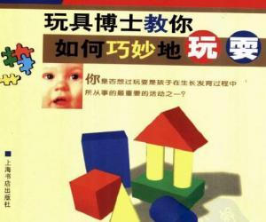 《玩商:玩具博士教你如何巧妙地玩耍》扫描版[PDF]