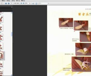 《实用水果切雕技法》扫描版[PDF]