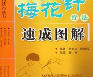 《梅花针疗法速成图解》扫描版[PDF]