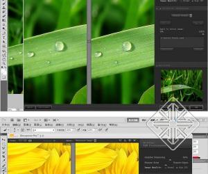 《摄影图像后期锐化插件软件》