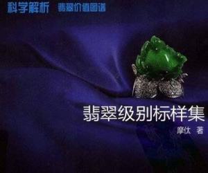 《翡翠级别标样集》扫描版[PDF]