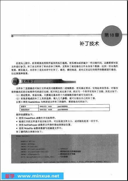 《加密与解密(第三版) PDF+光盘镜像+附带电子档完整版》PDF+光盘镜像+额外电子文档完整版