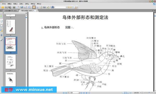 生物学 动物学 >> 详细内容   内容介绍: 本图鉴共列我国所曾记录的鸟