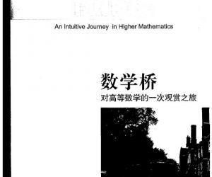 《数学桥——对高等数学的一次观赏之旅》