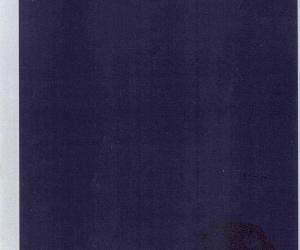 《禅宗思想的形成与发展》扫描版[PDF]