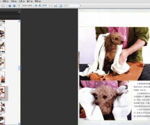 《宠物犬家庭护理美容通用手册》扫描版[PDF]