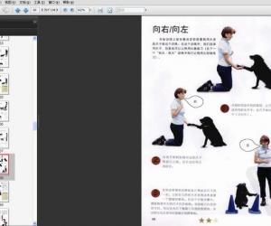 《宠物犬技能训练通用手册》扫描版[PDF]