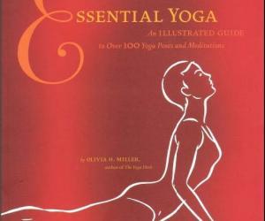 《基本瑜伽:100瑜珈指南》