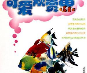 《可爱观赏鱼》扫描版[PDF]