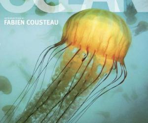 《海洋世界最后的荒野发现》(Ocean