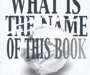 《这本书叫什么?——奇谲的逻辑谜题》扫描版[PDF]