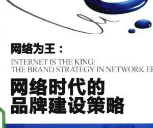 《网络为王  网络时代的品牌建设策略》扫描版[PDF]