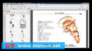 眼科解剖学图谱_《实用人体解剖彩色图谱》电子书[PDF] _ 医学 _ 科技 _ 敏学网