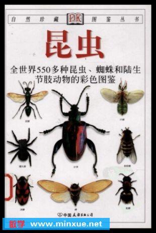 节肢动物的行为 社会性昆虫