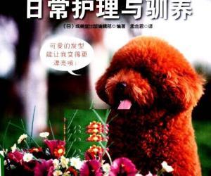 《卷毛狗狗的日常护理与驯养》电子书[PDF]