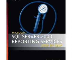 《Microsoft SQL Server 2000 Reporting Services 》英文原版