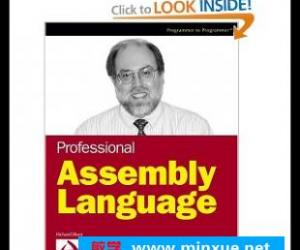 《专业汇编语言》Professional Assembly Language pdf